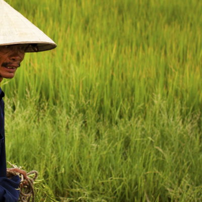 Personal Travel Management | Vietnam Food Adventure | A Culinary Journey Through Vietnam